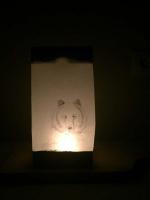 Fotka lampion č. 5